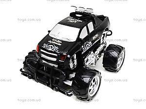 Машина на радиоуправлении Monster Track, С555-2-3, купить