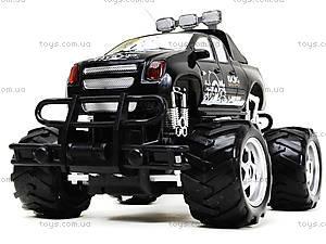 Машина на радиоуправлении Monster Track, С555-2-3, цена