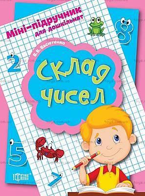 Математический мини-учебник для дошкольников, 03733