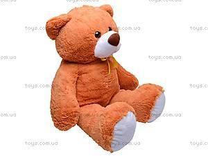 Медведь детский «Алексейка», 10322, фото