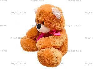 Медведь детский мягкий «Веселун», 10.01.23, фото
