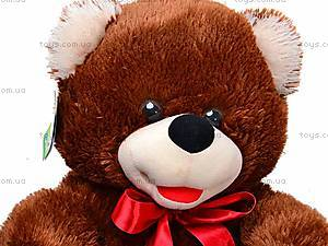 Медведь для детей «Веселун», 10.01.04, фото