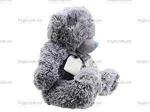 Медведь музыкальный «Тедди», S-S38-3367A3, купить