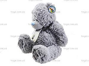 Мягкий музыкальный медведь «Тедди», S-S38-3367A4, цена