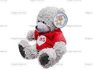 Плюшевый медвежонок «Тедди», в футболке, GC120018, купить