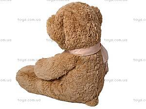 Медведь музыкальный, с шарфиком, S-JY-3271/60, фото