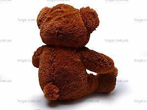 Медведь музыкальный с шарфом, JX6547-1/18, фото