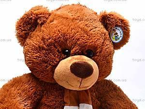 Медведь музыкальный с шарфом, JX6547-1/18, отзывы