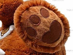Медведь музыкальный с шарфом, JX6547-1/18, игрушки