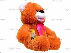 Медведь мягкий «Солодунчик», 10.02.03, фото