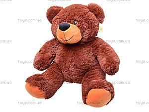 Медведь плюшевый с шарфиком, 5084/40, фото