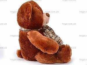 Медведь с шарфом, S-YZ-4036/38S, отзывы