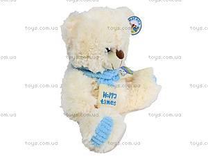 Медведь с шарфом, музыкальный, B21488, фото