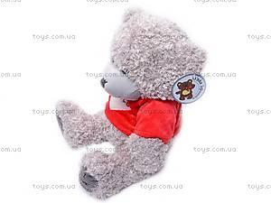 Медведь «Тедди» в футболке, GC12001/10, фото
