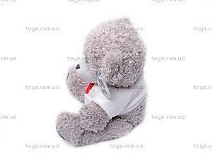 Медведь «Тедди» в футболке, GC12001/10, отзывы