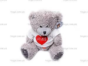 Медведь «Тедди» в футболке, GC12001/10, магазин игрушек