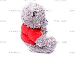 Медведь «Тедди» в футболке, музыкальный, GC12001/8, купить