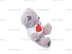Медведь «Тедди» в футболке, музыкальный, GC12001/8, фото