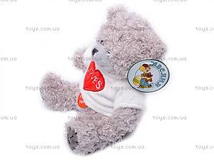 Медведь «Тедди» в футболке, музыкальный, GC12001/8, магазин игрушек