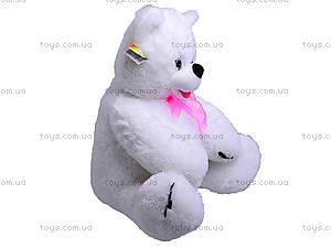 Медведь «Веселун», 10.01.07, фото