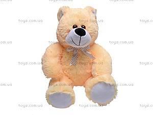 Медвежонок плюшевый «Митя», 10468, купить