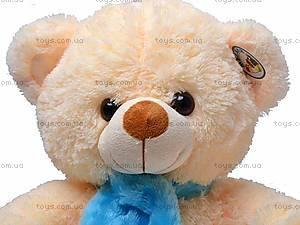 Медвежонок, с шарфом, S38-1488, фото