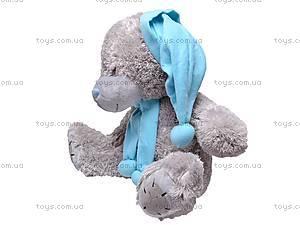 Медвежонок Тедди в колпаке, F-2291A/50, купить