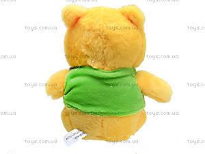Игрушечный медвежонок «Винни», F-F2714, фото