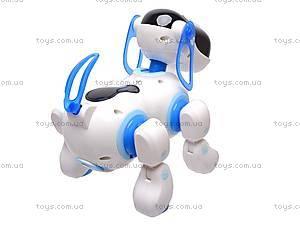 Мини-робот «Собака», 2089, фото