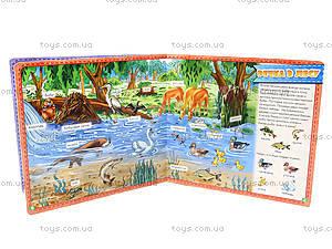 Мой первый словарик «В лесу», с окошками, А116015Р, фото