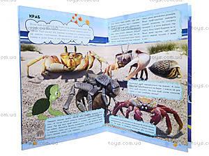 Мини-справка «О чем мечтает кашалот? Жители морей и океанов», К181012У, купить
