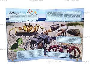 Мини-справка «О чём мечтает кашалот? Обитатели морей и океанов», К181011Р, купить