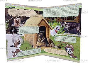 Мини-справочная «Откуда в блюдце молоко? Домашние животные», К181005Р, фото