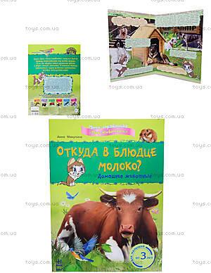 Мини-справочная «Откуда в блюдце молоко? Домашние животные», К181005Р