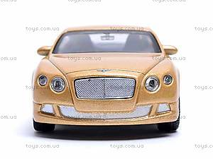Модель Bentley Continental GT, 44036CW, фото