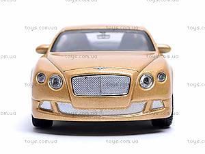 Модель Bentley Continental GT, 44036CW, фото
