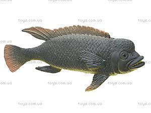 Игрушки резиновые «Морские животные», HC0042R, отзывы
