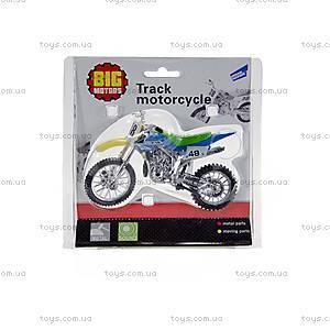 Мотоцикл трековый, озвученный, 10784-2788A, фото
