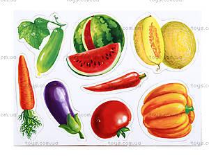 Мой маленький мир на магнитах «Фрукты, овощи», RK2101-04, купить