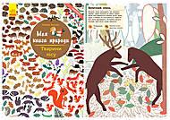 Книга «Моя книга природы. Животные в лесу», С849008У, отзывы