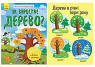 Книга «Моя первая энциклопедия. Как растет дерево» украинский язык, Л807004У