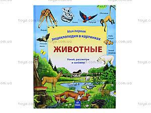 Детская энциклопедия «Животные», Р121003Р