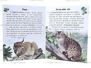Читаем по слогам «Животный мир гор», С366004У, фото