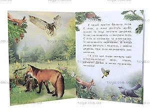 Читаем по слогам «Животный мир лесов», С366002У, купить