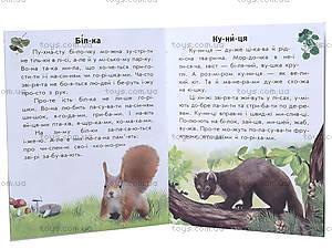 Читаем по слогам «Животный мир лесов», С366002У, фото