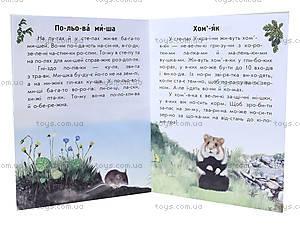 Читаем по слогам «Животный мир лугов и степей», С366008У, фото