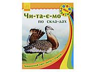 Читаем по слогам «Животный мир лугов и степей», С366008У, купить