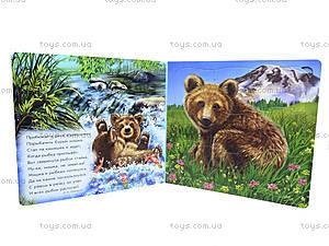 Детская книга  «Мои милые малыши», А353002Р, цена