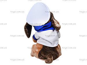 Музыкальная игрушка «Собака с гармошкой», CL1609B, купить