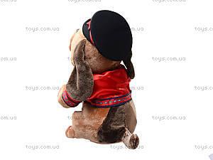 Музыкальная игрушка «Пёс с гармошкой», CL1609A, купить